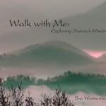 walk with me sue wasserman