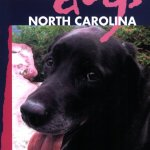 Best-Hikes-With-Dogs-North-Carolina-by-Karen-Chavez