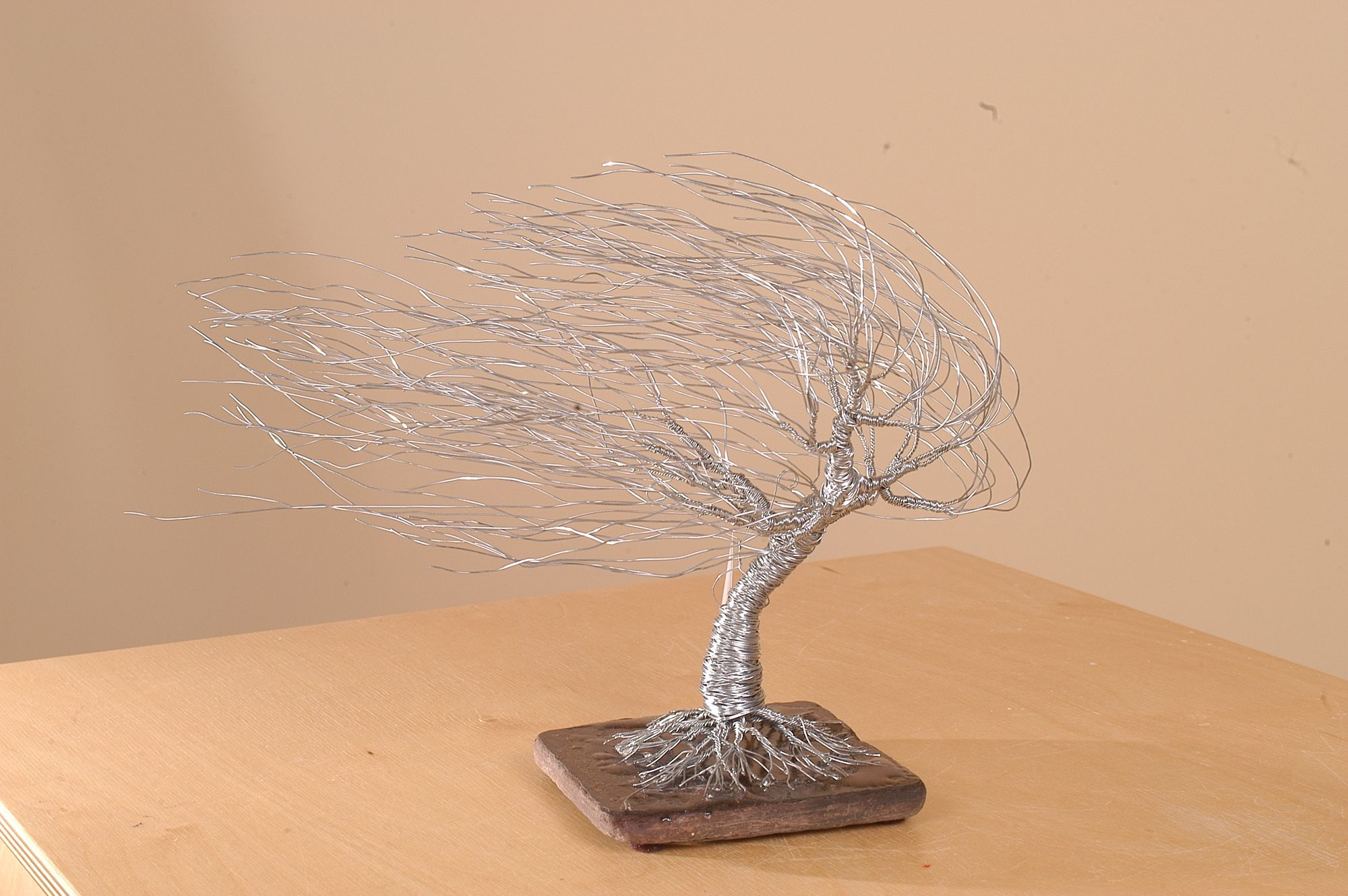 Asheville Art Gallery Contemporary Mountain Crafts Bonsai Tree Wiring Video Each Is Unique And Made From Over A 1000 Individual Strands Of Wire It Twisted By Hand Using Simple Tools Creativity