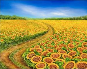 olga-dorenko-sunflowers