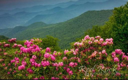 Western North Carolina Arts and Crafts