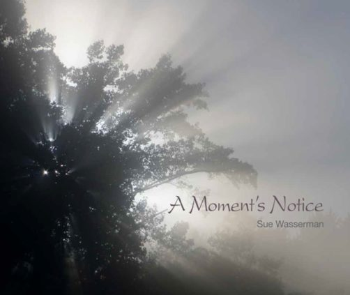 a-moments-notice