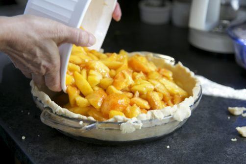 barbara swell, pies