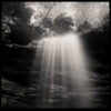 Black & White Nature Photos by Max Cooper [Pinhole Photography]