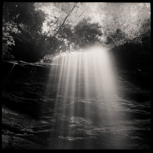 black and white nature photos by Max Cooper [Pinhole Photography]